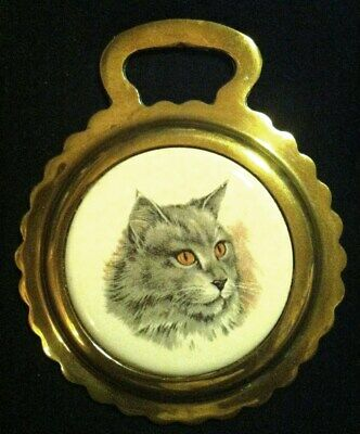 Vintage GRAY MAINE COON CAT W/ ORANGE EYES Porcelain Horse Brass WOW YOUR WALLS!