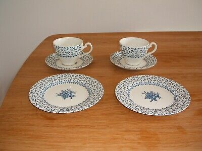 "Blue ""Rose Bouquet"" Royal Victoria tea and cake set for 2"