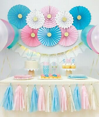 Gender Reveal Baby Shower, Boy and Girl Twins Birthday Party Decorations