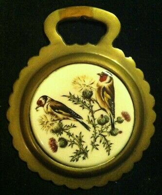 Vintage Porcelain BIRD 2 GOLDFINCHES Horse Harness Brass England WOW YOUR WALLS