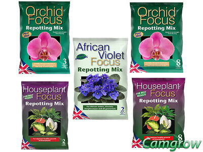 Growth Technology - Focus Repotting Range Orchid, African Violet & Houseplant