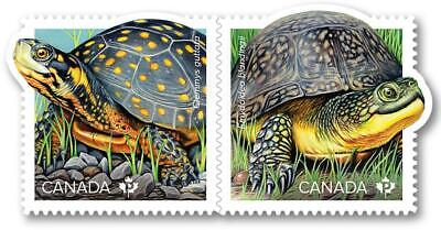 2019 Canada 🍁 ENDANGERED TURTLES Pair of MNH Stamps 🍁 Colorful Issue
