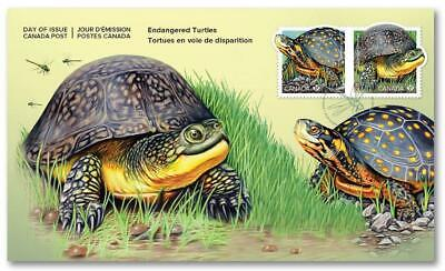 2019 Canada 🍁 ENDANGERED TURTLES First Day Cover 🍁 Very Colorful