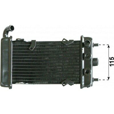 Motorroller Radiator Wasserkühler JMP Malaguti Password 760102