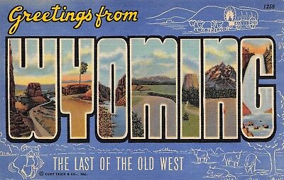 Greetings from Wyoming Wy Large Letter Linen
