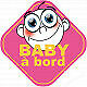Stickers / autocollant Baby a bord fille