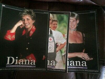 DIANA A Tribute to The People's Princess 3 Part Mirror