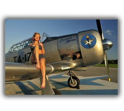 """War WW2 1940's style pin-up girl sitting on the wing Photo Glossy """"4 x 6"""" inch D"""