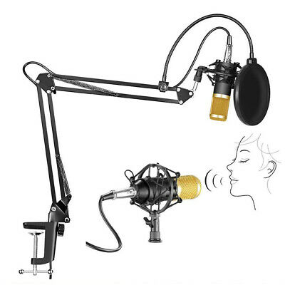 Studio Condenser Microphone Shock Mount Kit for Broadcasting Recording YouTube