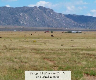 Valencia County New Mexico 2 Acre Ranch Land Rio Grande Estates Belen New Mexico