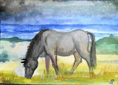 ACEO animal LANDSCAPE  PAINTING Dora Pilssala ORIGINAL Wild horse by sea
