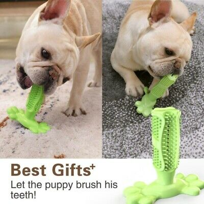 Dog Toothbrush Chew Cleaning Toy Silicone Pet Brushing Oral Dental Care 5 Colors