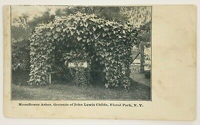 Postcard Floral Park NY Grounds Of John Lewis Child's Moonflower Arbor New York