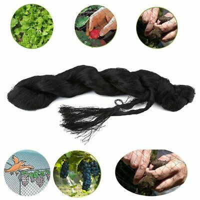 Nylon Plants Crops  Orchard Protect Bird Mesh Preventing Mist Anti-bird Net