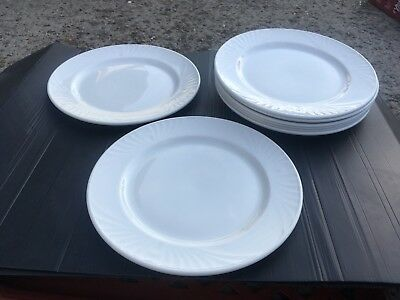 A Collection Of DUDSON 24 Large Plates Fine China
