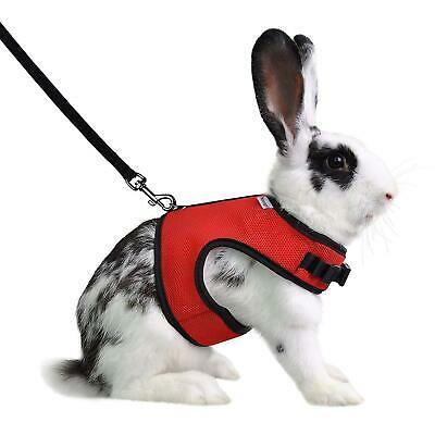 Red Small Animal Pet Harness and Leash Set FIZ