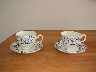 "Blue ""Rose Bouquet"" Royal Victoria tea cup and saucer x 2"