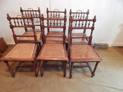 Gorgeous Set of Six Belgian Solid Oak Dining Chairs