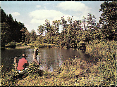 Sutton Ponds at Forest of Dean Gloucestershire UK Postcard