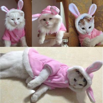 Pet Girl Dog Cat Easter Bunny Rabbit Ears Outfit Fancy Dress Costume Outfit LA