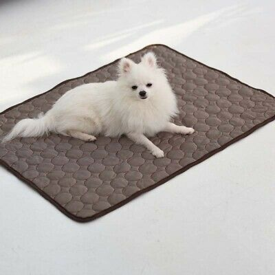 Dog Cooling Mat Pet Puppy Cat Ice Silk Non-Toxic Bed Pad Cushion Indoor Summer