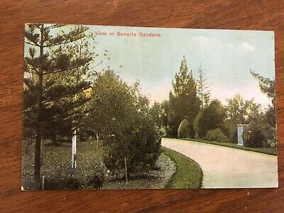 POSTCARD of VIEW IN BENALLA GARDENS, VICTORIA dated 1908
