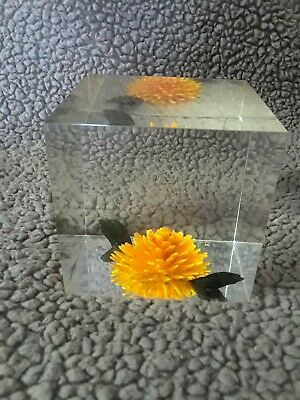 Vintage Dry Flower Lucite Acrylic Square Cube Paperweight BEAUTIFUL Hard to Find