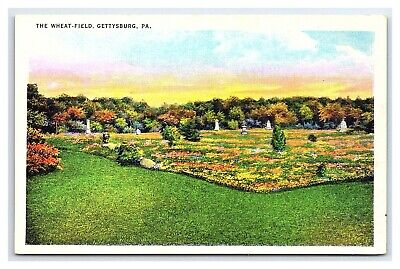Vintage Postcard Civil War The Wheat Field Gettysburg PA I15