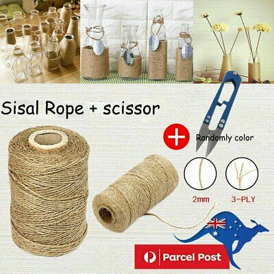 3Ply 100m Natural Brown Soft Jute Rope Twine Sisal String For Art Gift Bottle UI