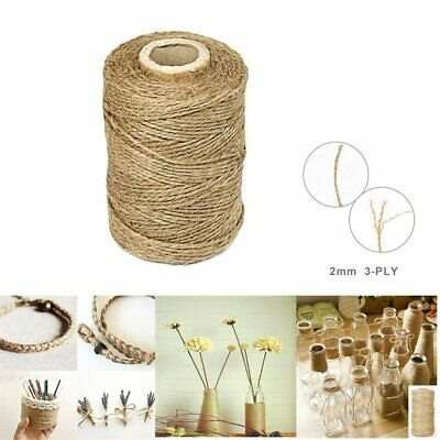 3Ply 100m Natural Brown Soft Jute Rope Twine Sisal String For Art Gift Bottle R