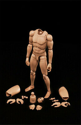 1/6 Scale Male Body Series Highly Cost-Effective Edge MX02-B body