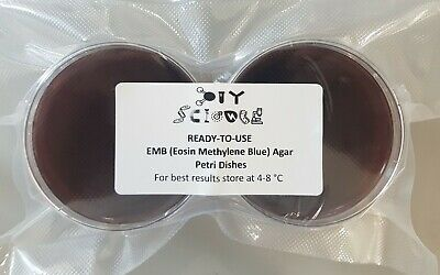EMB (Eosin Methylene Blue) Agar Petri Dishes x6 (Sterile, Vacuum sealed)