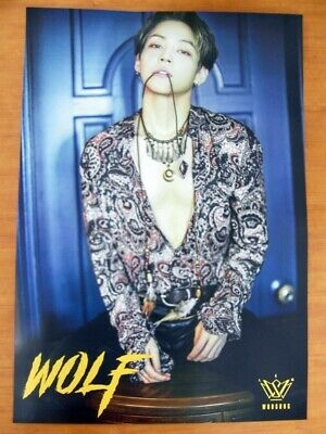 KIM WOO SUNG - Wolf [OFFICIAL] POSTER *NEW* K-POP Woosung THE ROSE