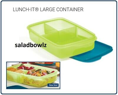 TUPPERWARE New LARGE 1L LUNCH-IT DIVIDED CONTAINER Rectangular Larger Size NoBPA
