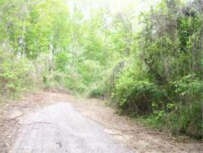 1.40 ACRES OF VACANT LAND in CAMPBELL COUNTY, JACKSBORO, TN - Bankruptcy Sale!