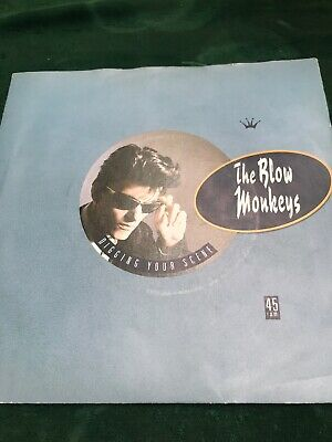 "The Blow Monkeys- Digging Your Scene Vinyl 7"" 45Rpm Ps"