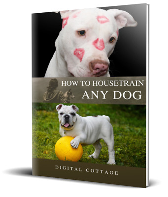 How To Housetrain Any Dog PDF-Ebook + Free Shipping