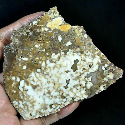 418.20 Ct 100%natural african white & green moss agate druzy slice rough or khad