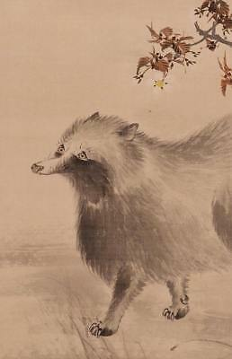 Raccoon Dog JAPANESE PAINTING Art Old Hanging Scroll Japan Moon ANTIQUE c863