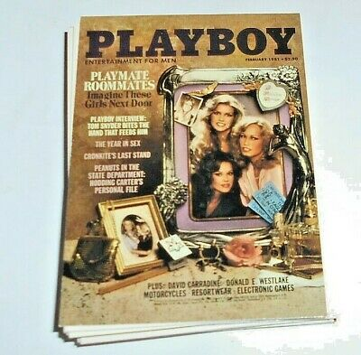 LOT OF 20 VINTAGE 1980's PLAYBOY TRADING CARDS NON SPORT LOT 5