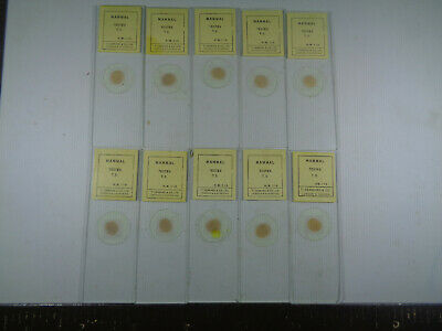 Set of 10 vintage T.Gerrard prepared mammalian microscope slides LOTMS7F22