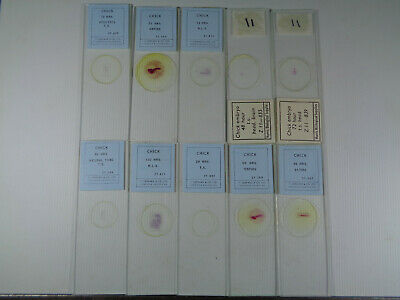 Set of 10 vintage T.Gerrard prepared bird microscope slides LOTMRC74E4