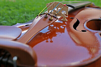 FRENCH OLD 19th century VIOLIN  after Andreas Borelli. Listen to the video!