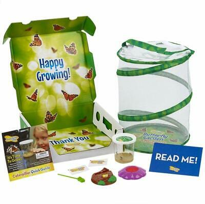 Insect Lore Butterfly Garden with Live Cup of Caterpillars