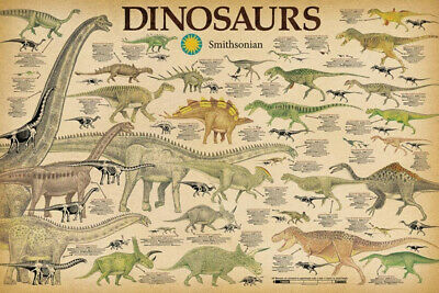 DINOSAURS CHART Science Poster by Smithsonian, size 24x36