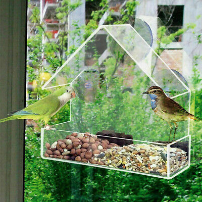 Window Bird Feeder Wild Table Hanging Suction Perspex Clear Viewing Seed Peanut