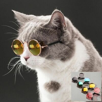 Cute Pet Glasses Small Dogs Puppy Cat Sunglasses Pet Dog Eye Protection