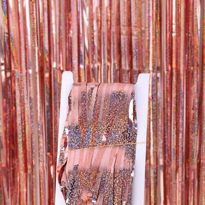 Long Metallic Foil Fringe Tinsel Curtain Wedding Backdrop Birthday Party Kids T
