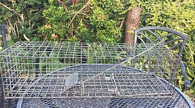 Small Humane Animal Rodent Rat Pest Trap Cage USED