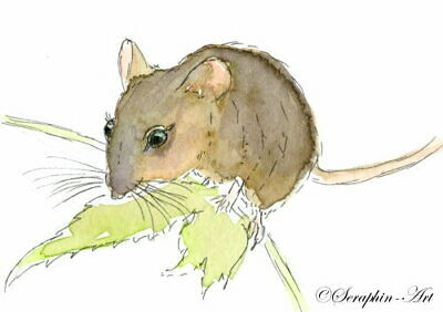 Original ACEO Watercolor Painting Little Mouse Wildlife Miniature Seraphin-Art